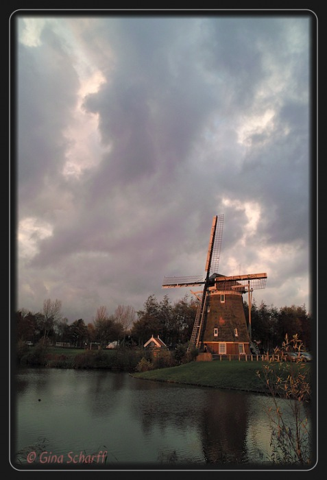 photoblog image Inspired by the Dutch Masters...